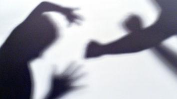 Закон одомашнем насилии
