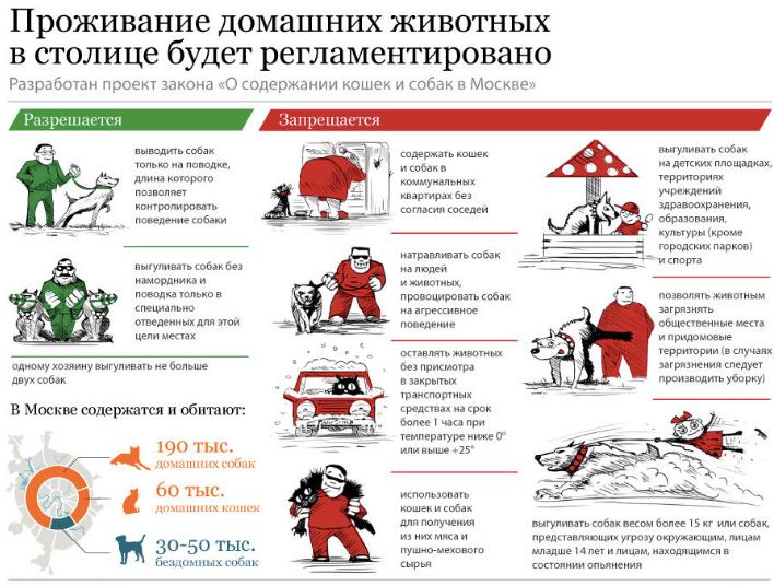Правила содержание домашних животных в Москве в 2019 году