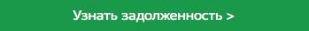 Проверить запрет на выезд за границу из РФ