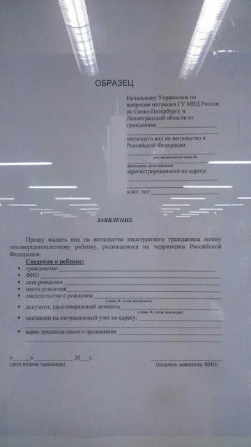 Вид на жительство ребенку: как получить в РФ, документы