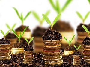 Господдержка сельского хозяйства в 2020 году в дагестане